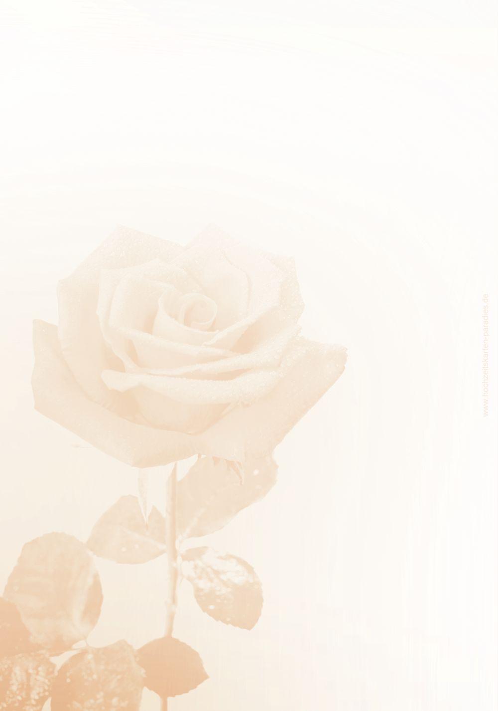 Ansicht 2 - Hochzeit Menükarte Rose