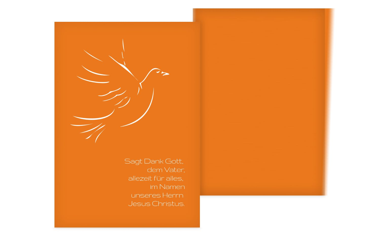 Firmung Dankeskarte Pigeon
