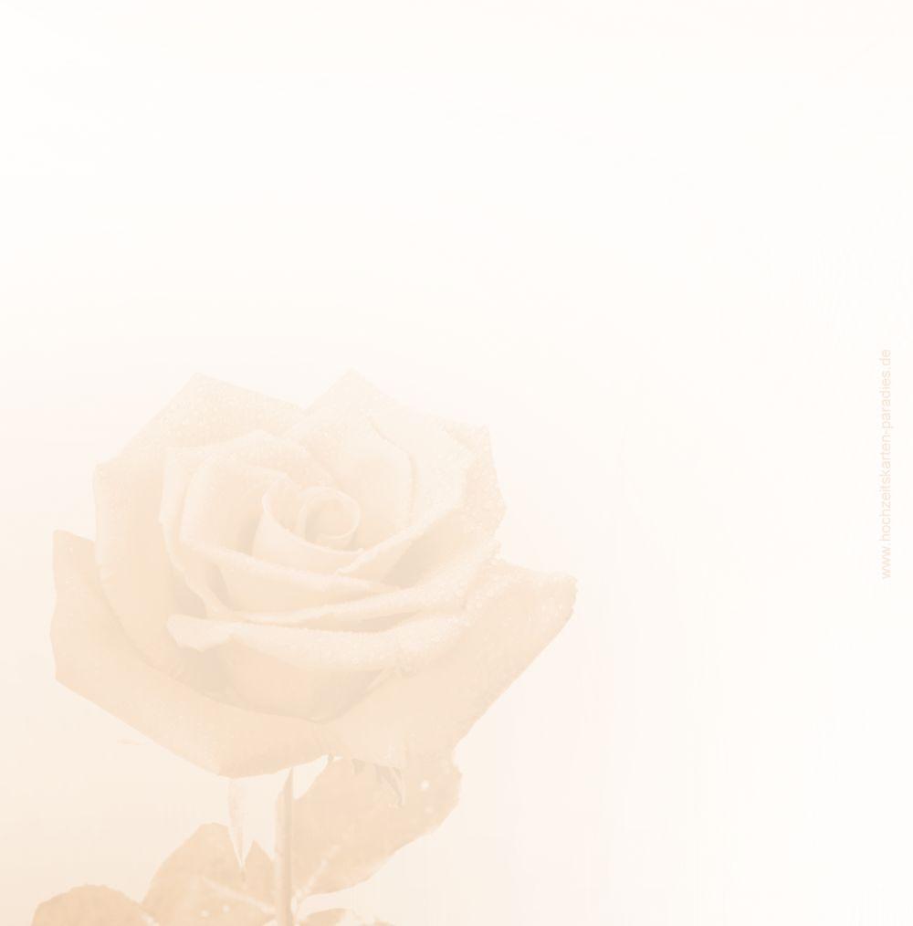 Ansicht 2 - Hochzeit Danke Rose