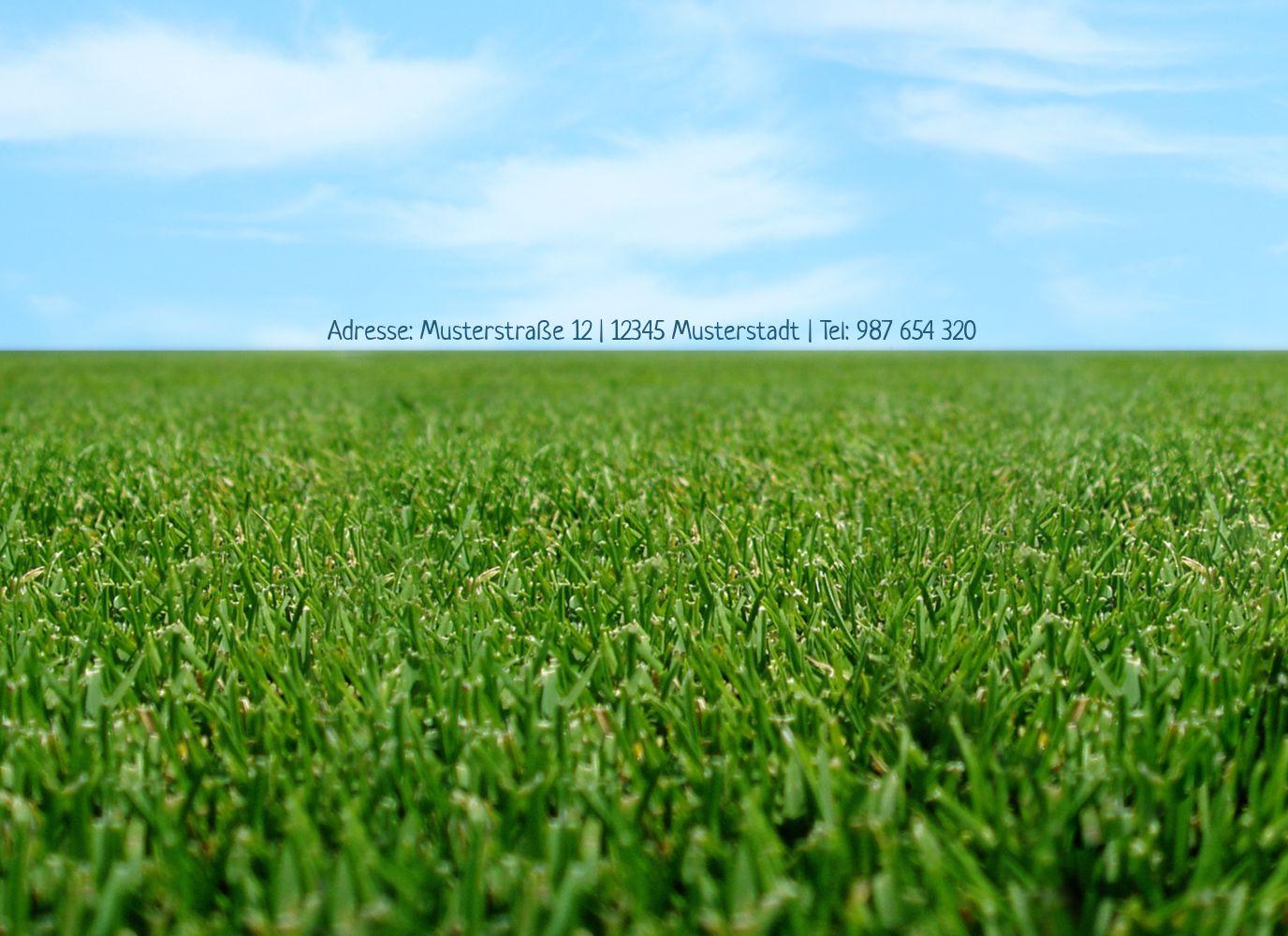 Ansicht 2 - Einladung Sommerfest saftiger Rasen